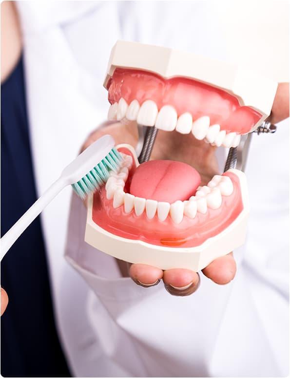 Contabilidade em Santa Catarina - SC | Duoexo Contabilidade - Contabilidade para Dentistas em Santa Catarina – SC | Duoexo Contabilidade